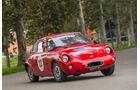 Gran Premio Nuvolari 2014