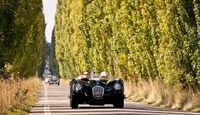 Gran Premio Nuvolari, Allee