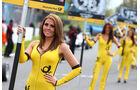 Grid Girl - Formel 3 EM - Brands Hatch - 2013