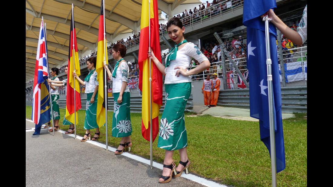 Grid Girls - GP Malaysia 2014 - Formel 19