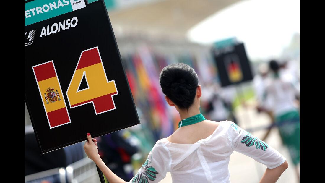 Grid Girls - GP Malaysia 2014 - Formel 24