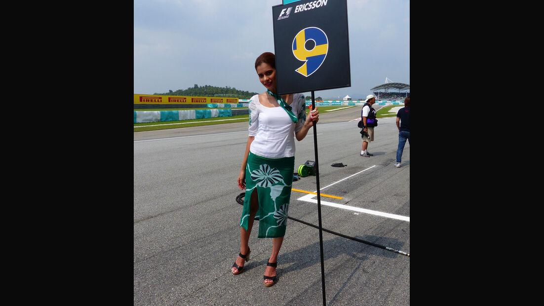Grid Girls - GP Malaysia 2014 - Formel 29