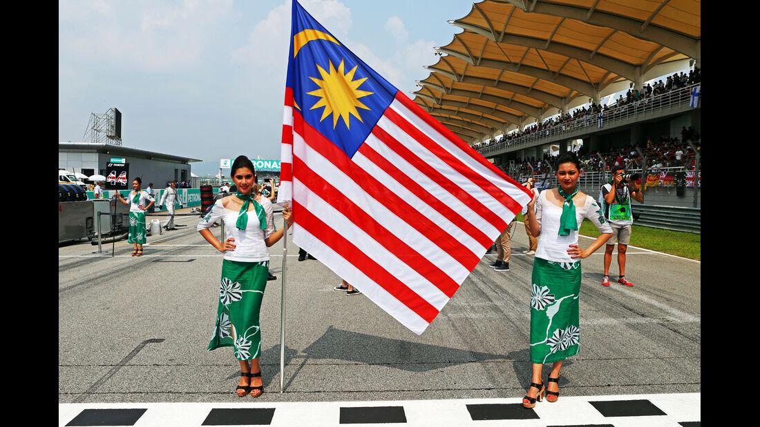 Grid Girls - GP Malaysia 2014 - Formel 33