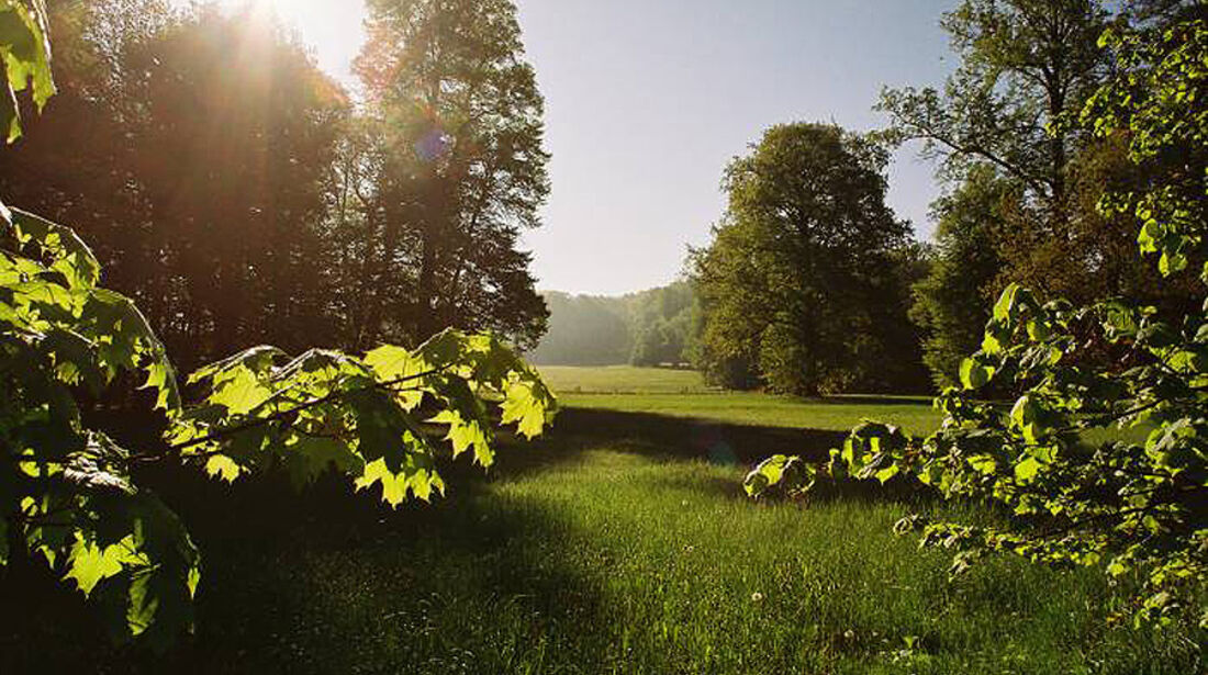 Grünfelder Park