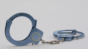 Halterhaftung