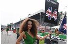 Hamilton Grid Girl - GP Italien 2016