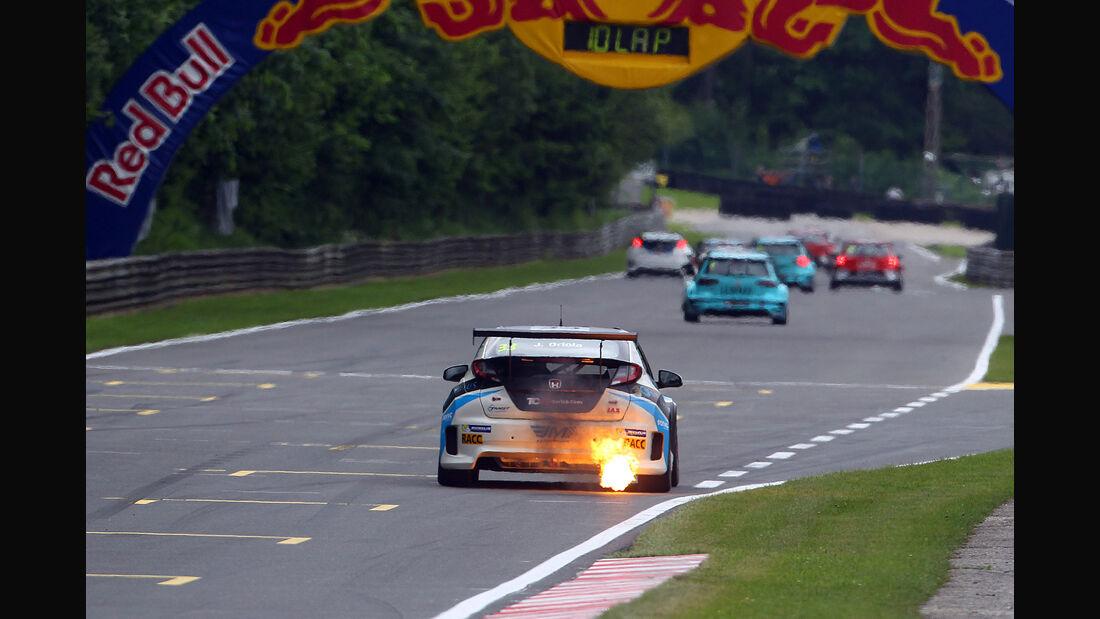 Honda Civic TCR - TCR 2016 - Tourenwagen - Motorsport