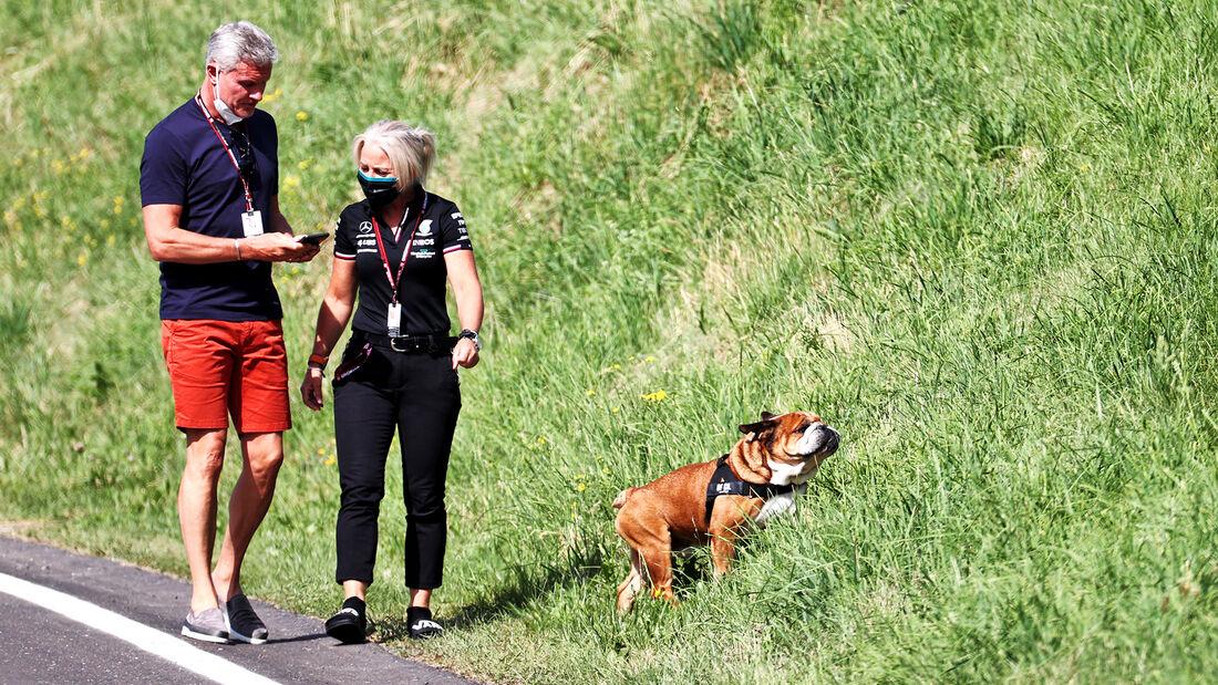 Hund von Lewis Hamilton - GP Steiermark - Spielberg - Formel 1 - 25. Juni 2021