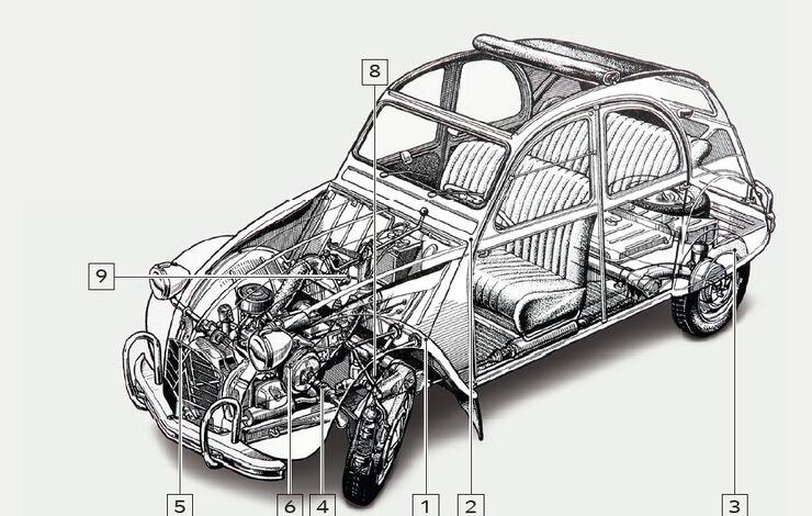 Igelbild Citroen 2 CV