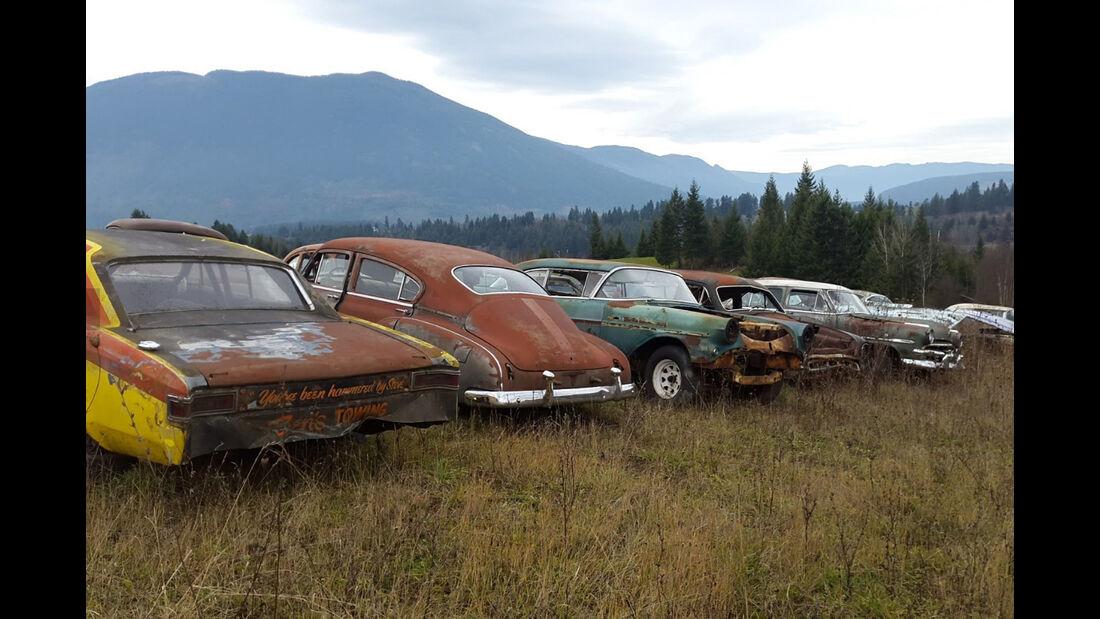 Immobilie Mike Hall Kanada 300 Autos Kauf