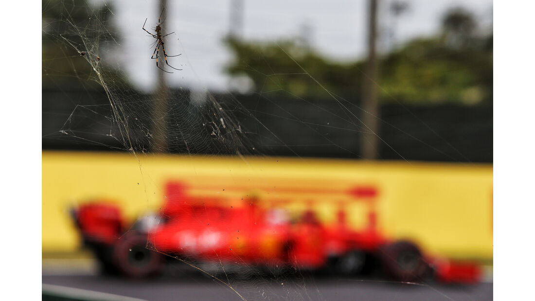Impressionen - Formel 1 - GP Japan - Suzuka - 11. Oktober 2019