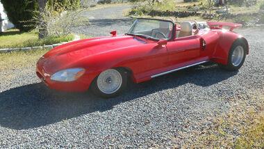 Jaguar Ford Custom