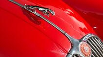 Jaguar XK 150 S OTS, Kühlerfigur