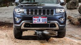 Jeep Gott