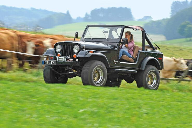 jeep cj 7 in der kaufberatung vom kriegsger t zum spa mobil auto motor und sport. Black Bedroom Furniture Sets. Home Design Ideas