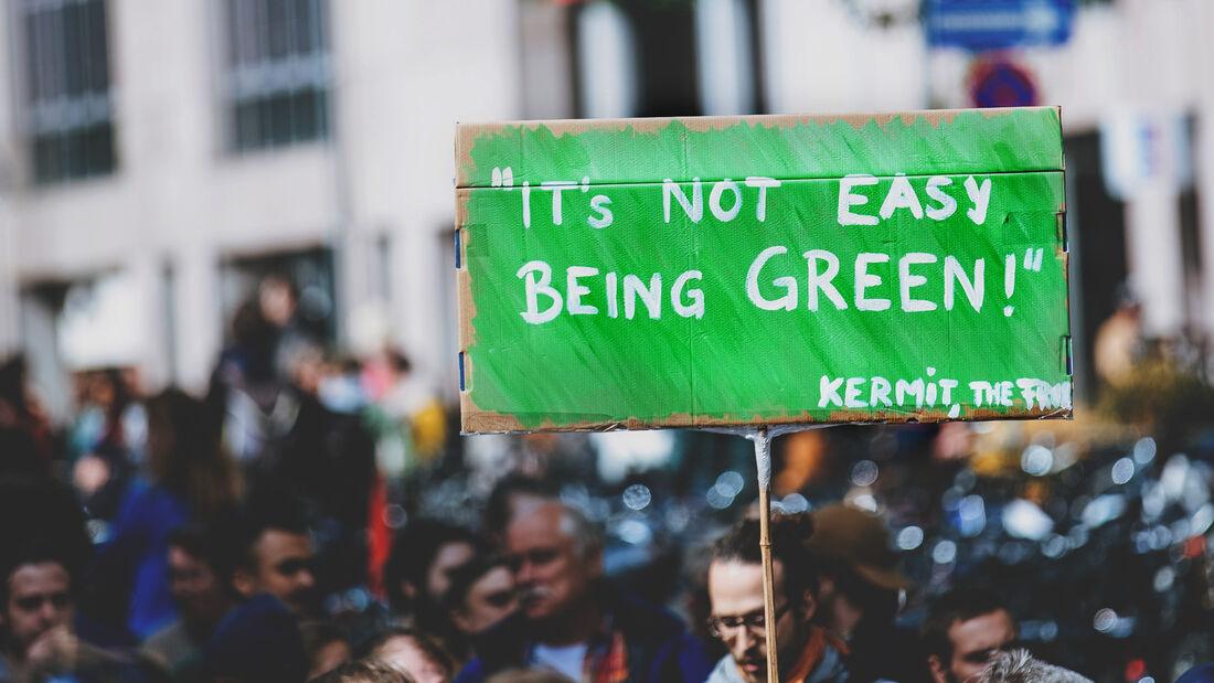 Klimawandel Protest Schild Grün Demonstranten