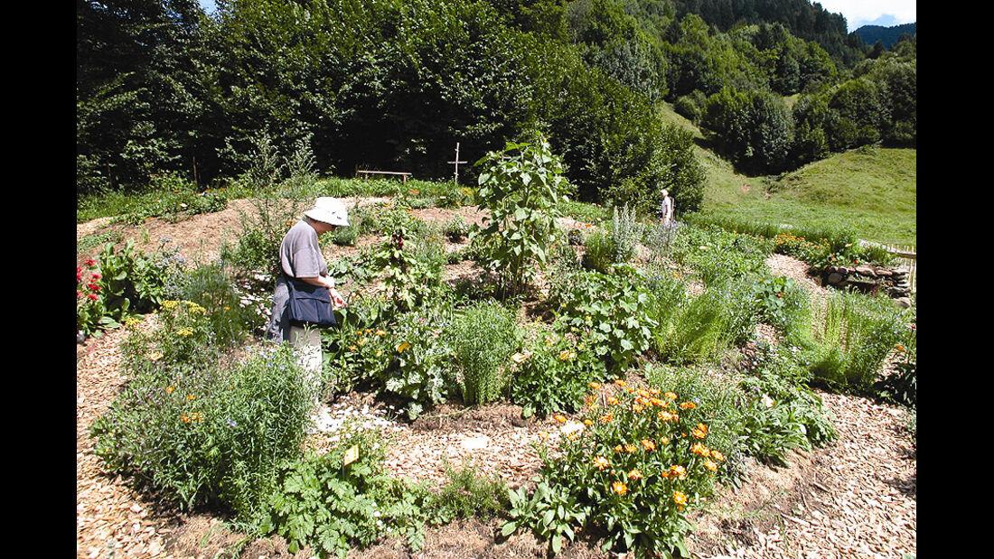 "Kräutergarten im ""Holdamoos"