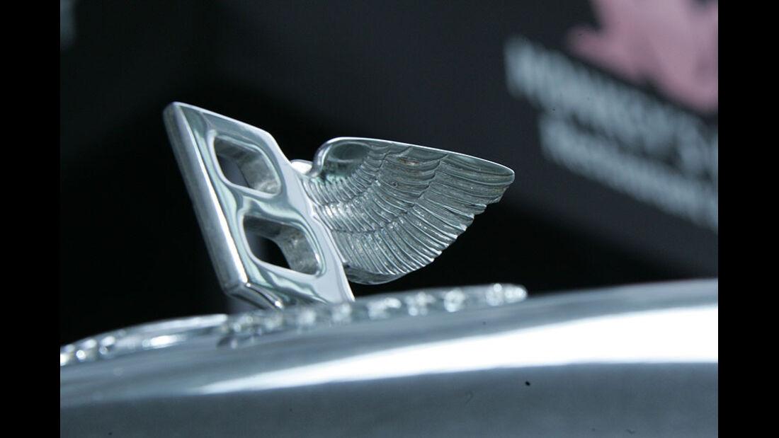 Kühlerfigur des Bentley S1