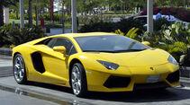 Lamborghini - Scheichautos - Formel 1 - GP Abu Dhabi - 03. November 2013