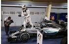 Lewis Hamilton - GP Bahrain 2015