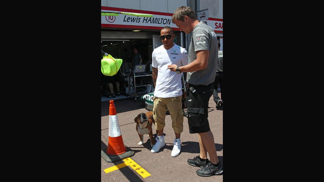 Lewis Hamilton mit Hund Roscoe - Formel 1 - GP Monaco - 22. Mai 2013