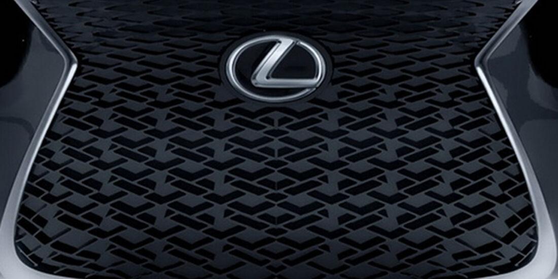 Lexus Grill