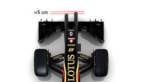 Lotus E22 - Nase
