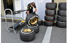 Lotus - Formel 1 - GP Brasilien - 20. November 2013
