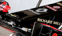 Lotus Nase - Formel 1 - GP USA  - 30. Oktober 2014