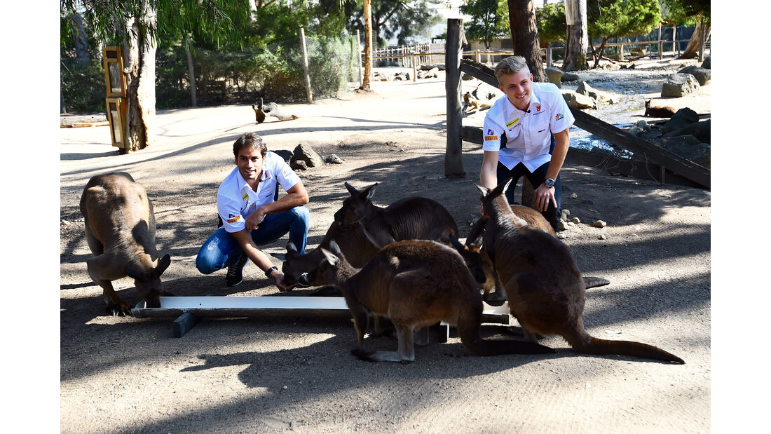 Marcus Ericsson & Felipe Nasr - Sauber - GP Australien - Melbourne - 16. März 2016