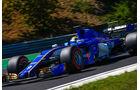 Marcus Ericsson - Sauber - F1-Technik - GP Ungarn 2017 - Formel 1