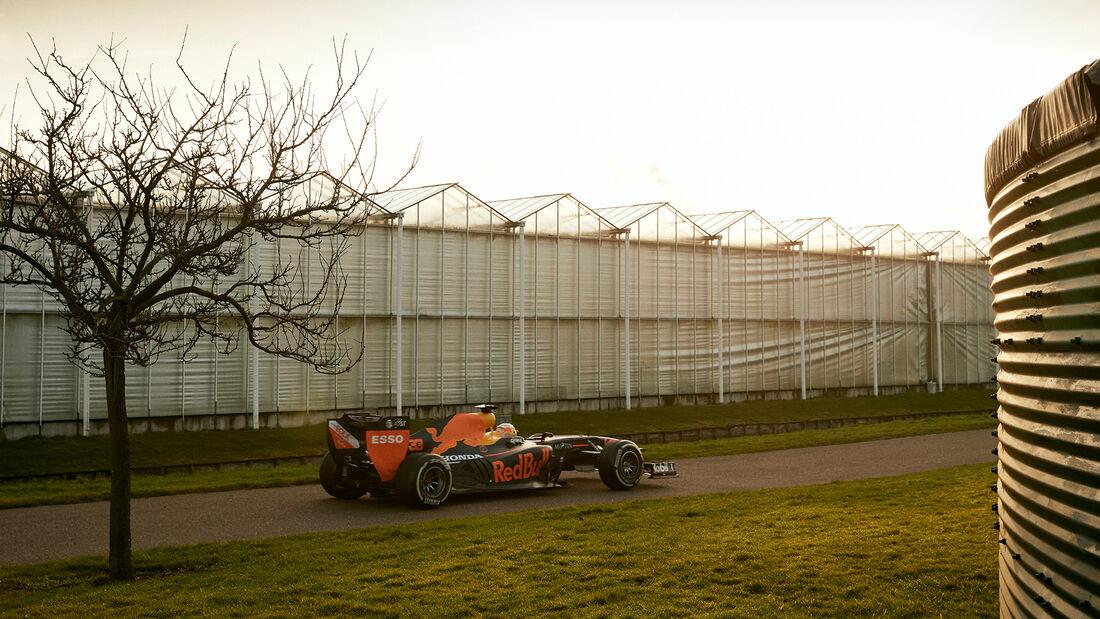 Max Verstappen - Red Bull RB7 - Road-Trip - Januar 2020