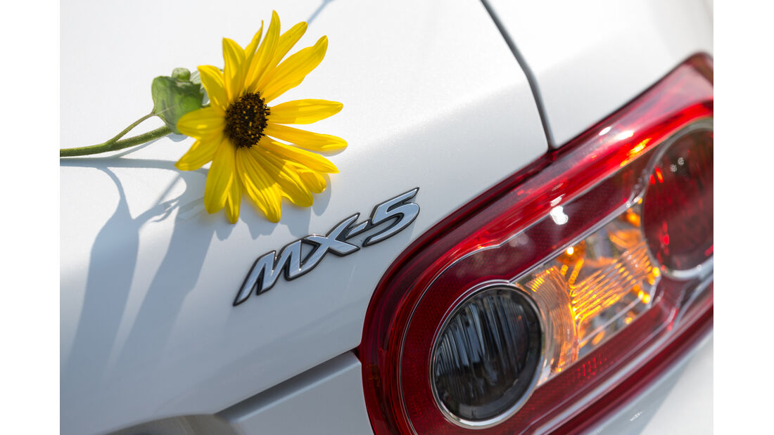 Mazda MX-5 2.0 MZR, Heckleuchte