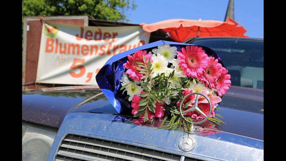 Mercedes 230 CE, Kühlergrill, Blumer