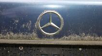 Mercedes 250 D, Emblem