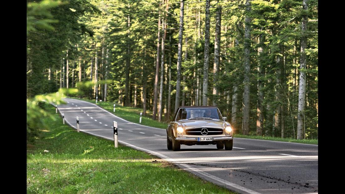Mercedes 280 SL, im Wald