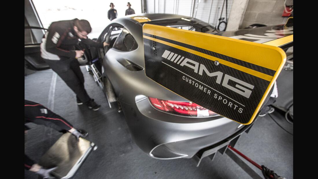 Mercedes AMG GT3, Seitenführung