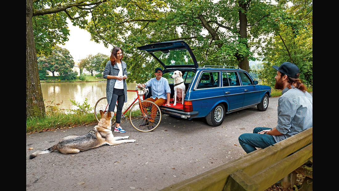 Mercedes-Benz 230 TE, Heckklappe