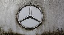 Mercedes-Benz 250 D, Stern
