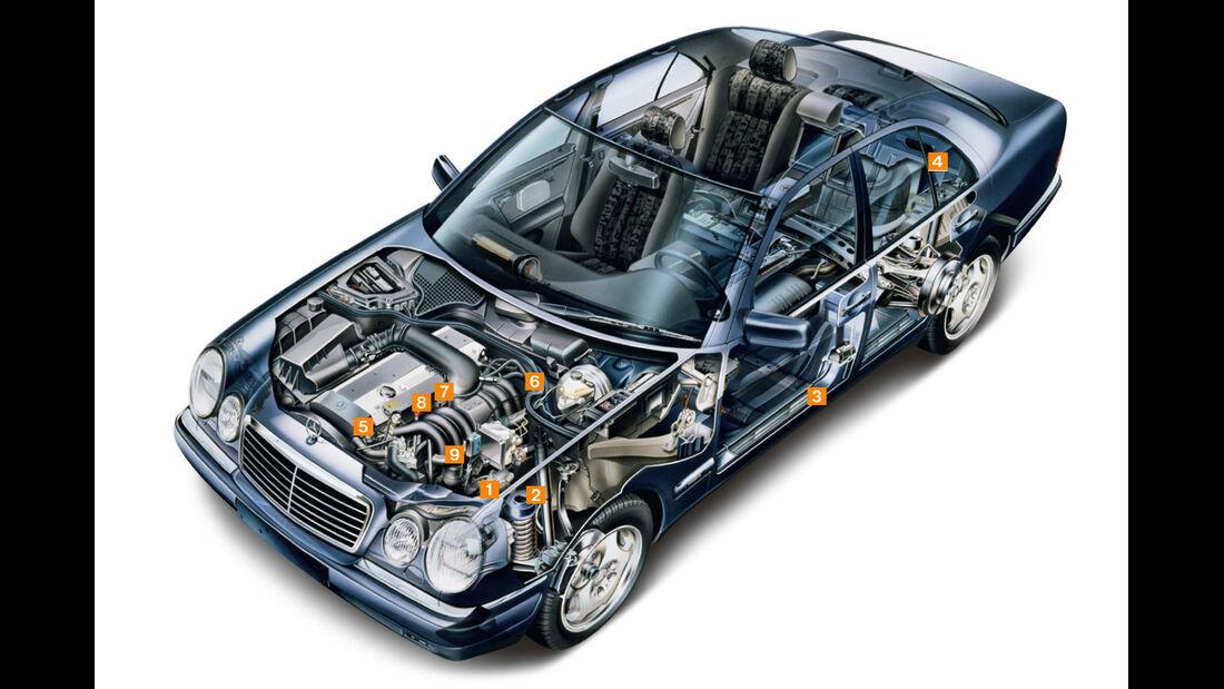 Mercedes E-Klasse (W210), Igelbild, Schwachpunkte