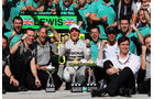 Mercedes - Formel 1 - GP Brasilien - 9. November 2014