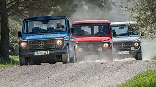 Mercedes G 461 Kaufberatung