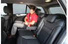 Mercedes ML 250 Bluetec 4-matic, Fond
