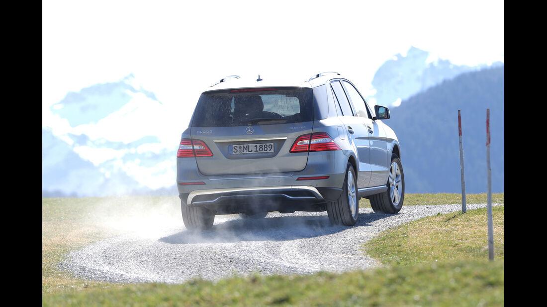 Mercedes ML 250 Bluetec 4Matic, Heckansicht