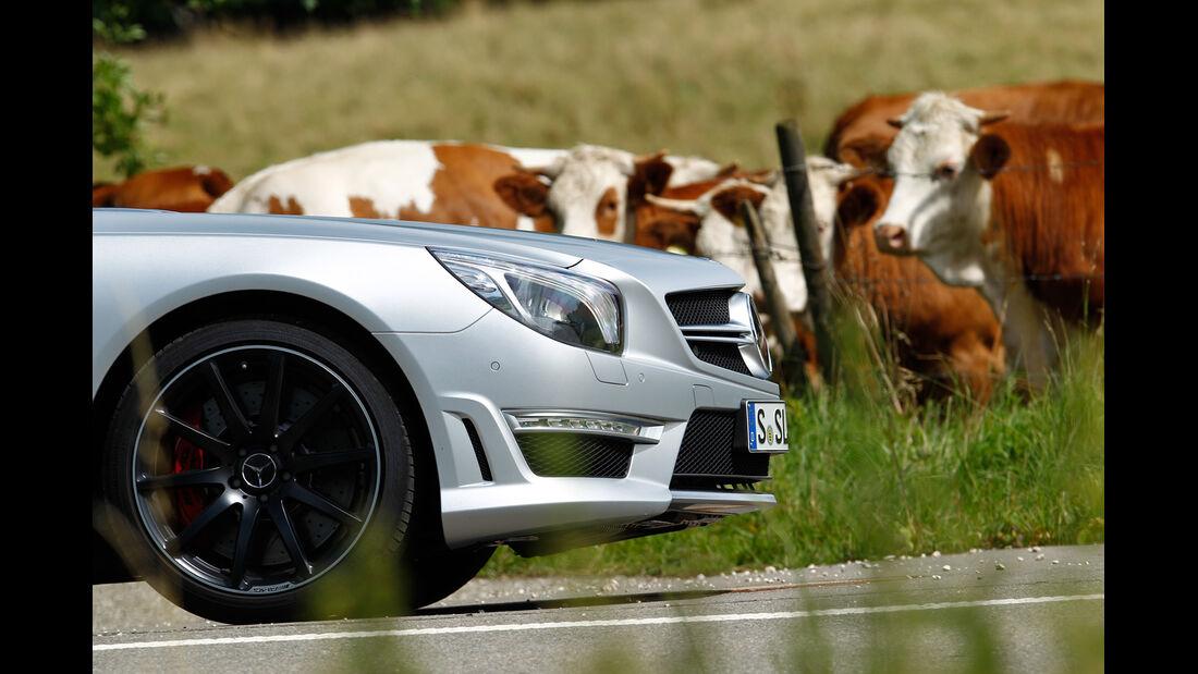 Mercedes SL 63 AMG, Motorhaube, Kühe
