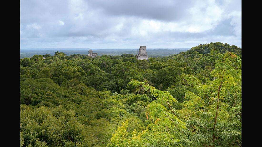 Mini Countryman Cooper S, Maya-Tempel, Urwald