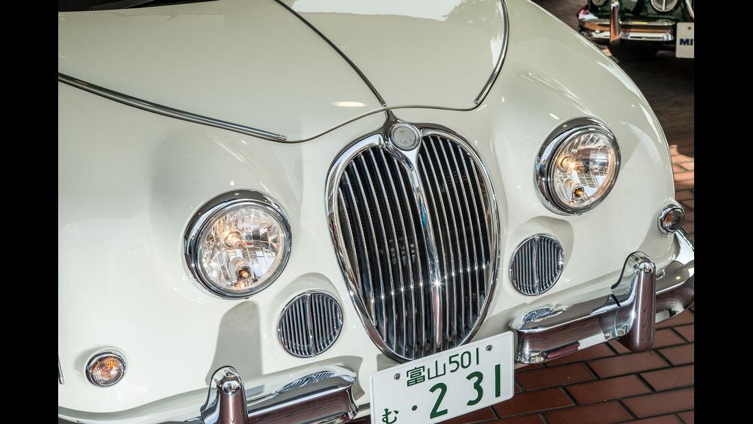 Mitsuoka, Viewt, Impression