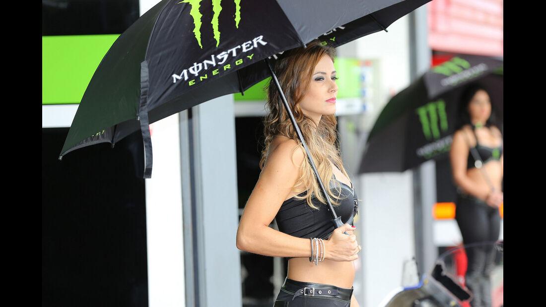 Monster Girl - 2014