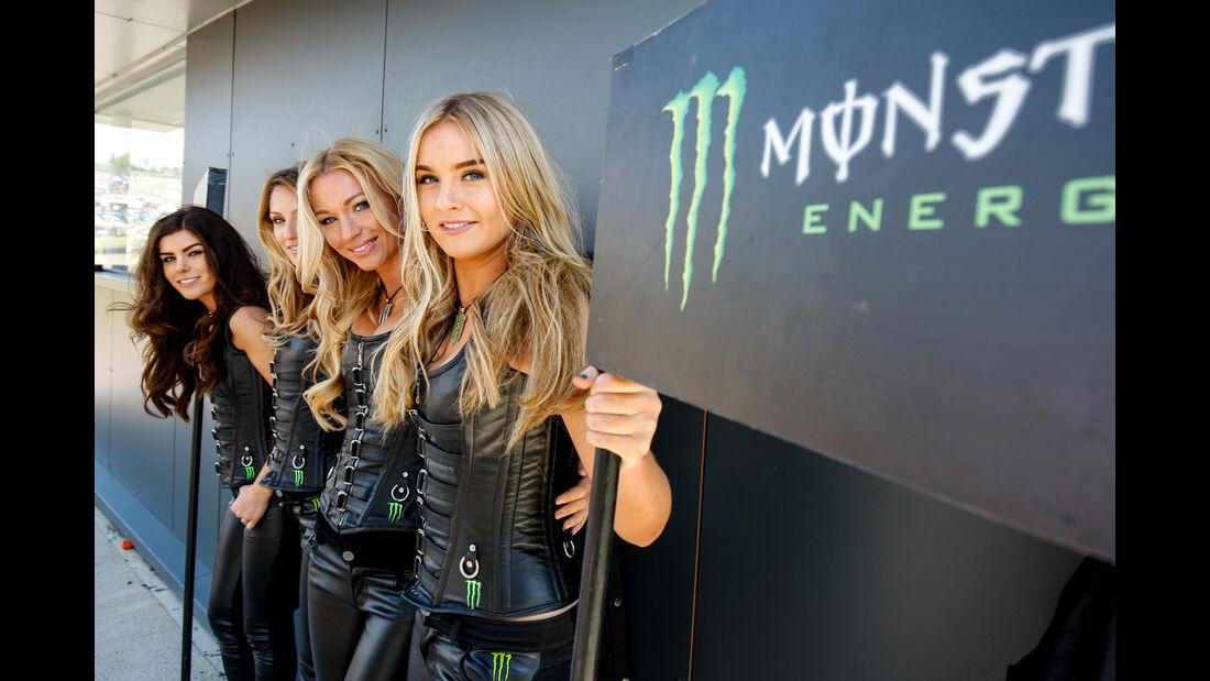 Monster Girls - 2015