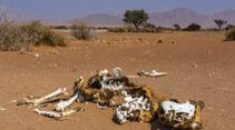 Namibia, Klimawandel